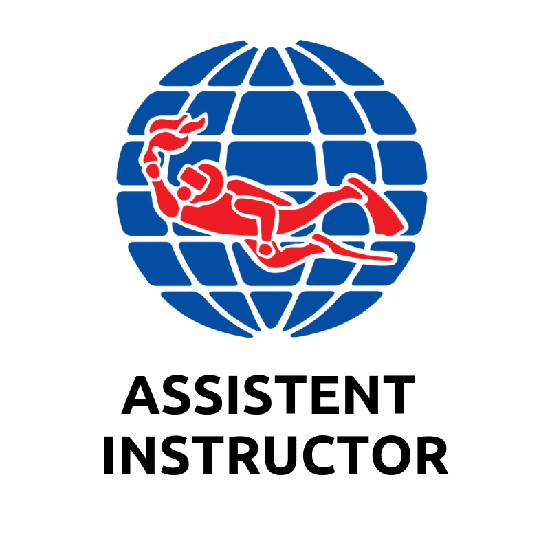 Assistant instructor ai